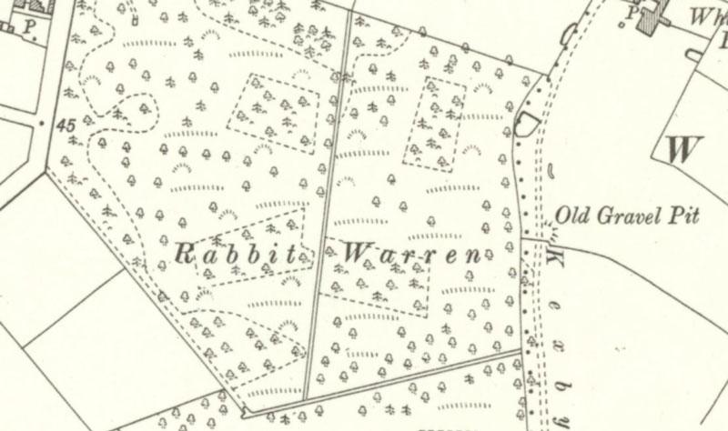 Map of Dunnington Common warren 1909