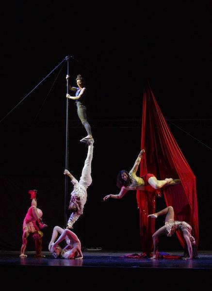 Jacksons Lane announces 10 UK tour dates for new Circus production Luminosa