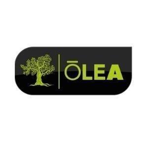 Logo Aceite Olea