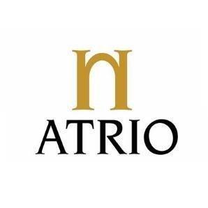 Logo Atrio
