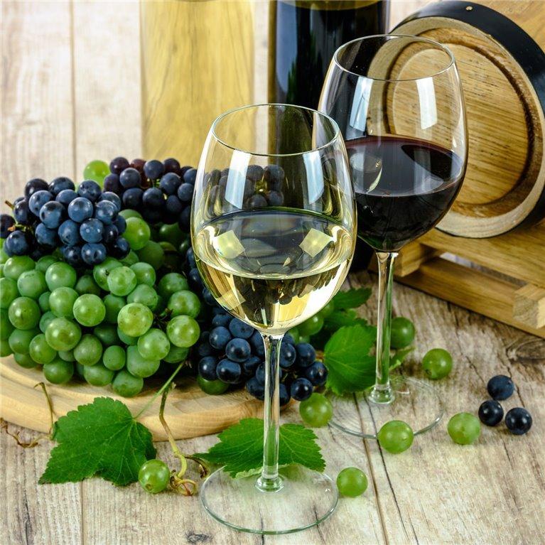 ir a Vinos Ecológicos