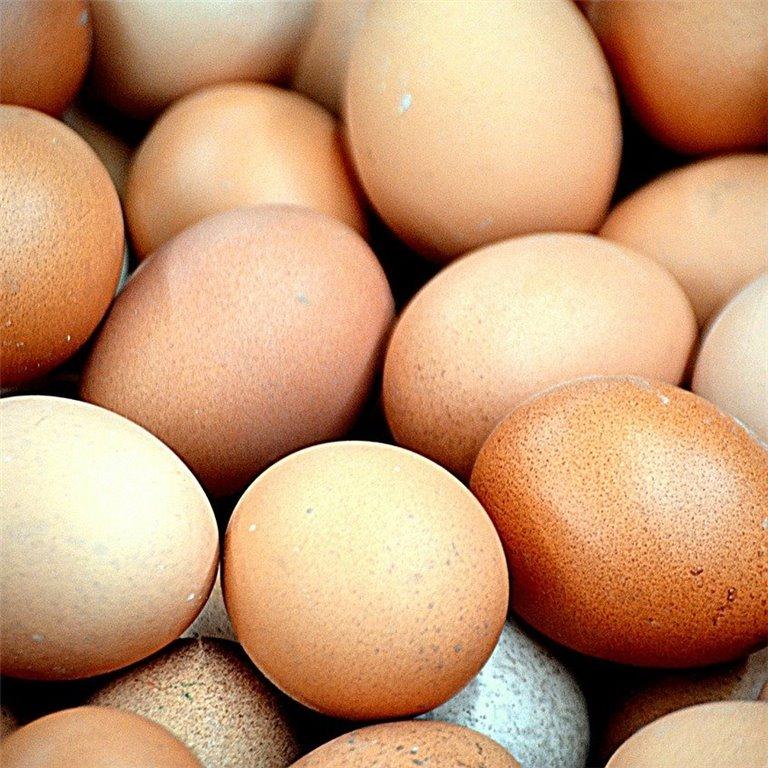 ir a Huevos