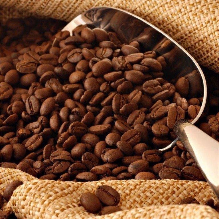 ir a Café en grano