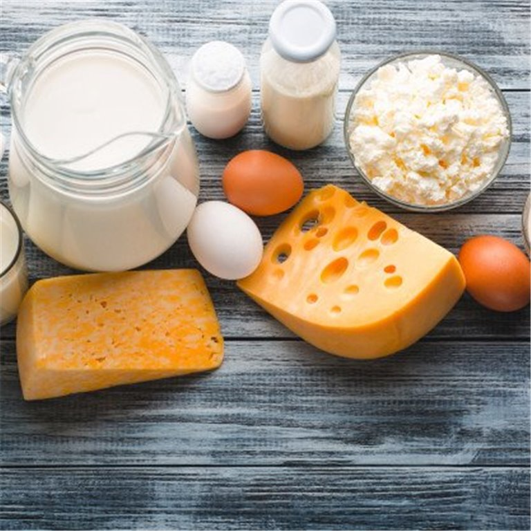 ir a Huevos y lácteos BIO