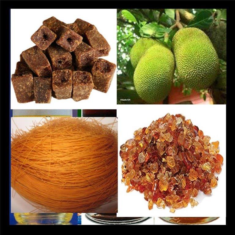 ir a Ingredientes Tradicionales | Traditional Ingredients