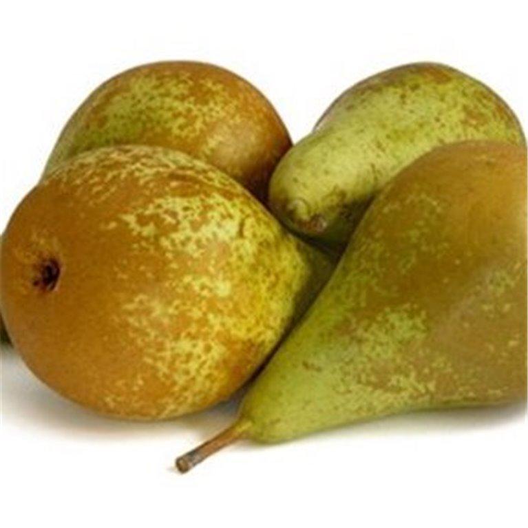 ir a Fruta Tienda