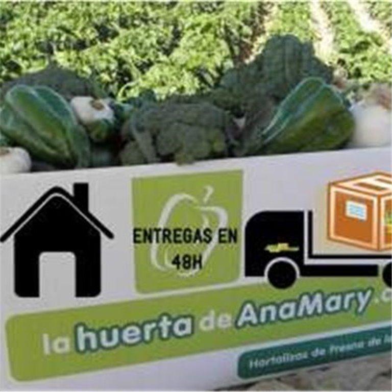 ir a Cestas de verduras y frutas