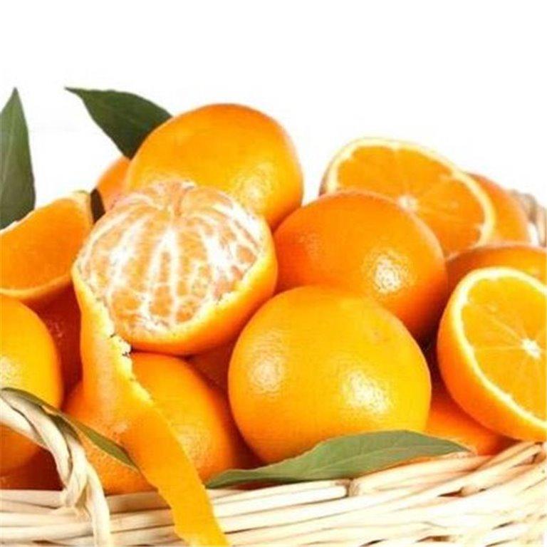 ir a Cajas de Regalo de Naranjas