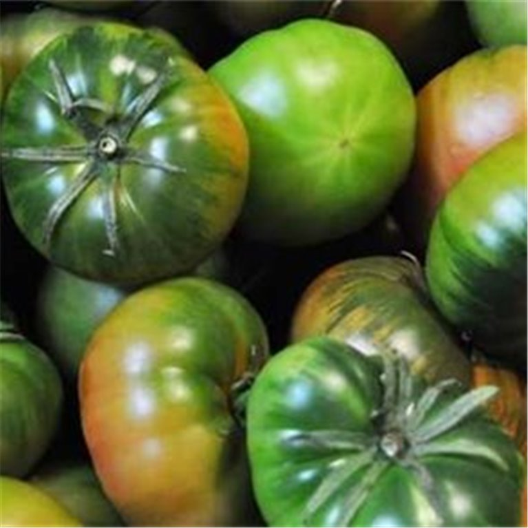 ir a Tomates