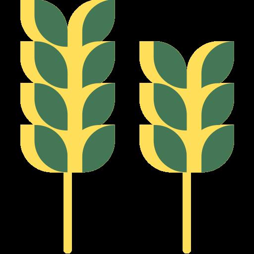 Arroz, legumbres y pasta