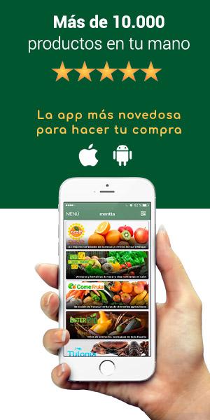 descargar-app-mentta