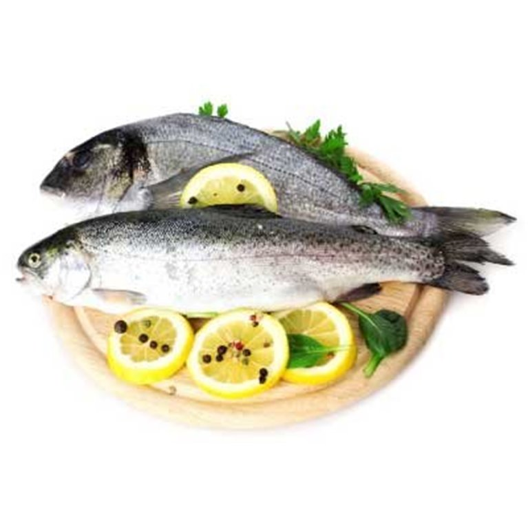 ir a Fish