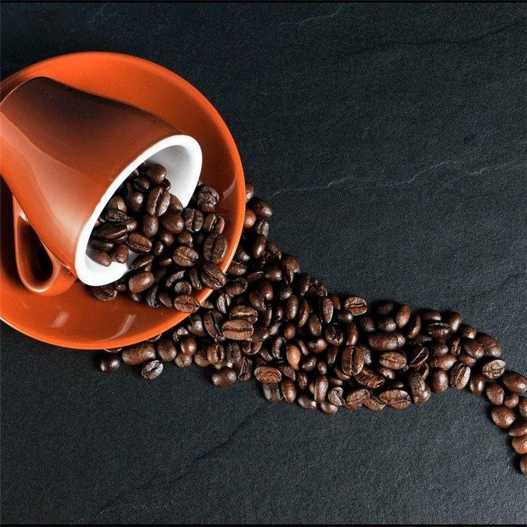 ir a Cafés, infusiones y cacao