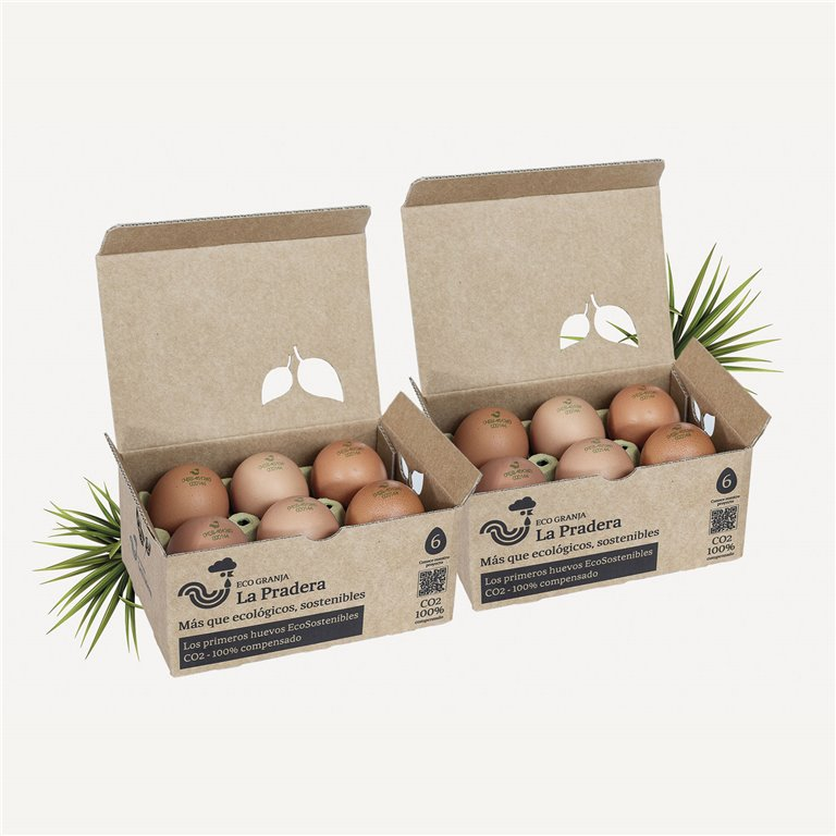 12 EcoSustainable Eggs