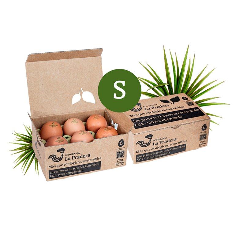 12 huevos Ecosostenibles - S -