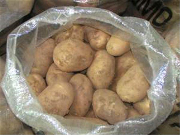 20 kg de patatas blancas variedad kennebec, 1 kg