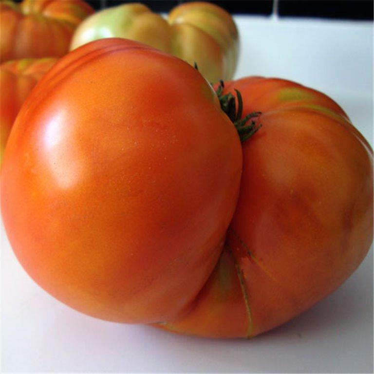 4 Kg de Tomate ecológico, 1 ud