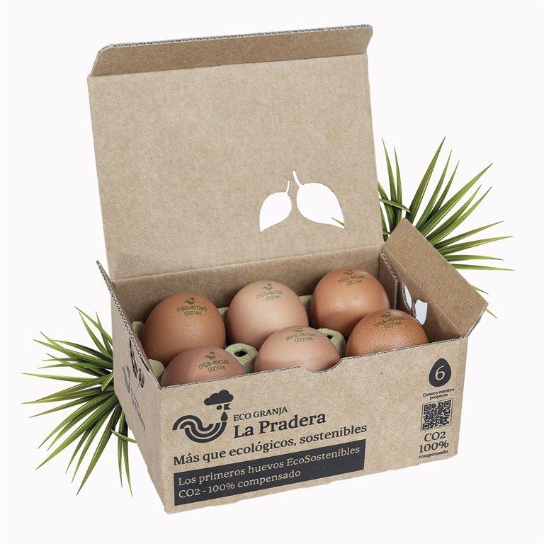 6 EcoSustainable eggs
