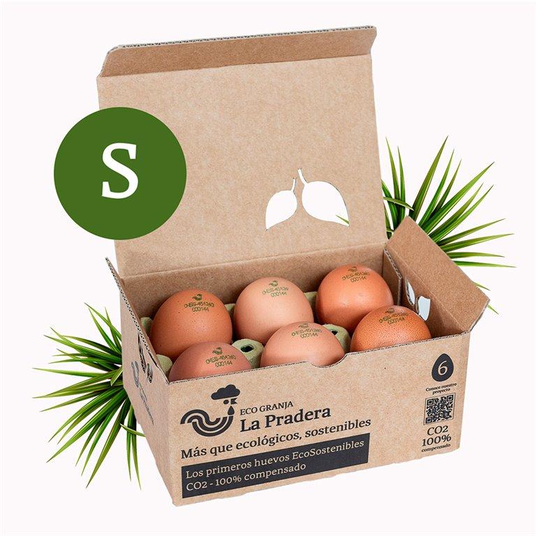 6 huevos EcoSostenibles - S -