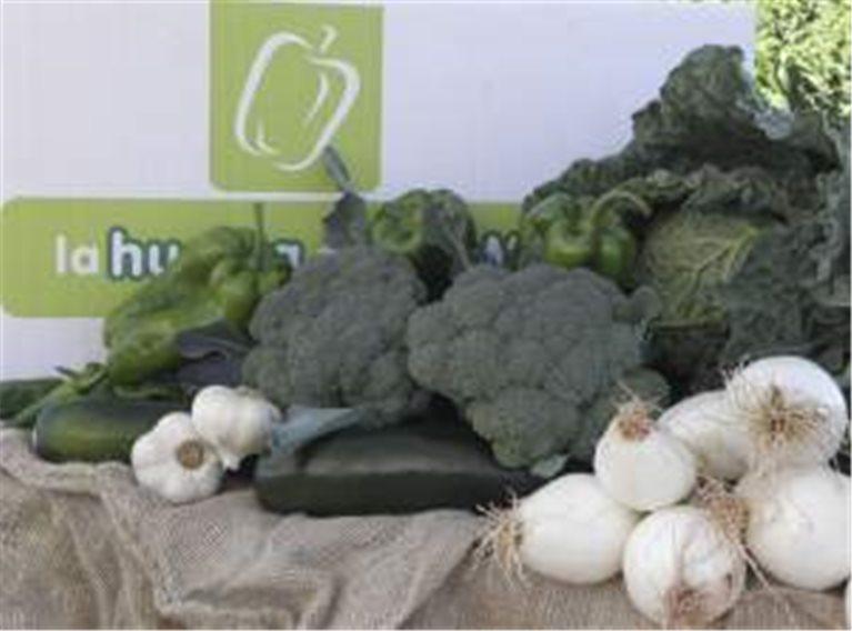 9 cajas de hortalizas 7 kg,..., 9 ud