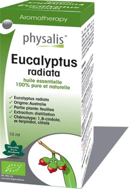 Aceite Esencial Eucalyptus Radiata
