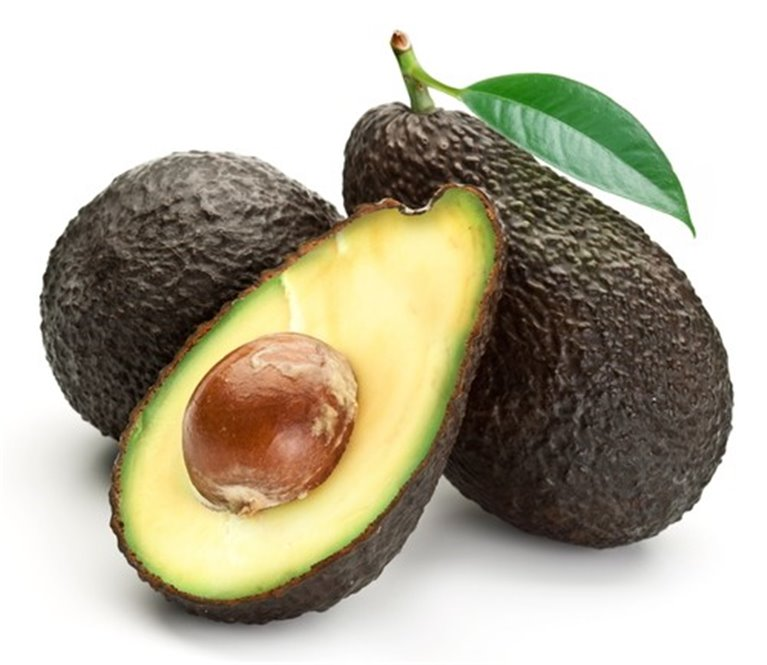 AGUACATE GOLD