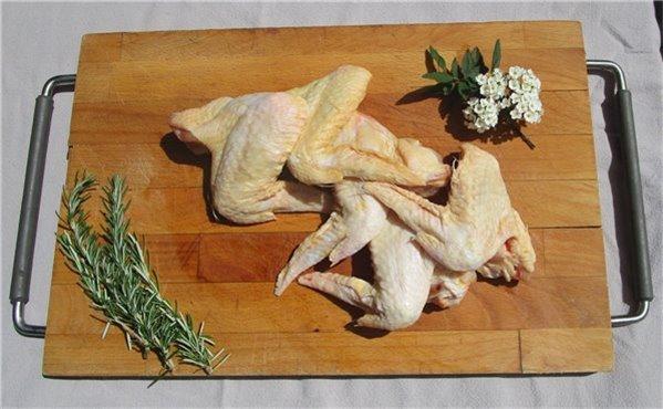 Alitas de pollo de pasto