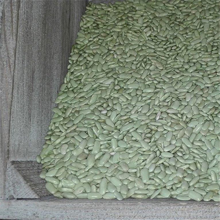 Alubias Verdinas 500 gr