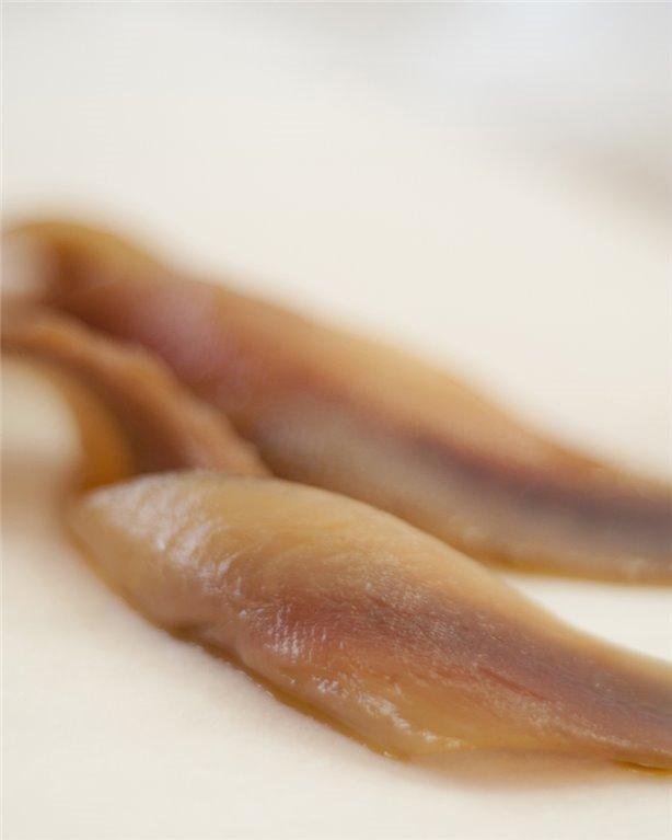 Anchoas del Atlántico, 1 ud
