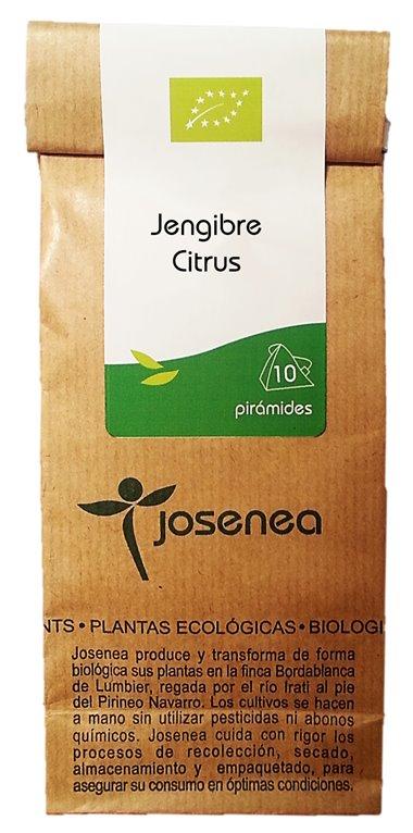 BIO JENGIBRE-CITRUS 10 pirámides, 1 ud