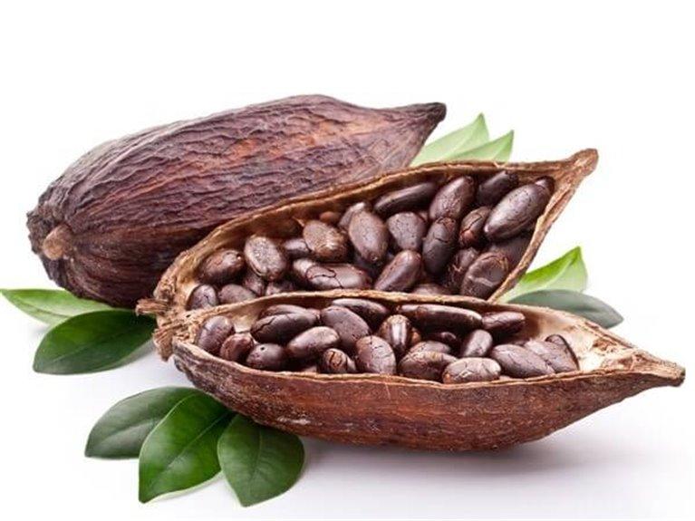 Cacao nibs BIO