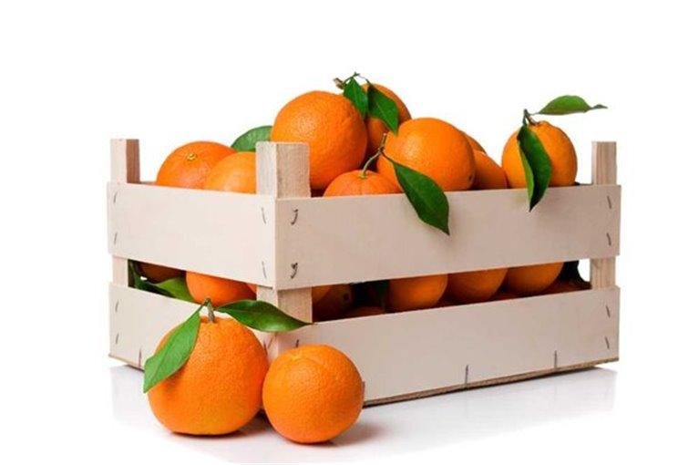 Caja de Naranjas de Mesa de 10 Kg (Aprox)