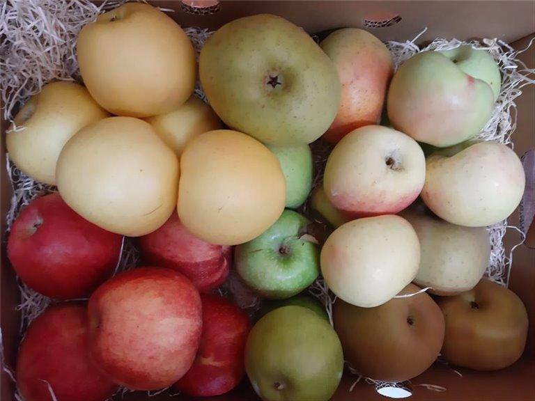 Caja Todo Manzanas Extra