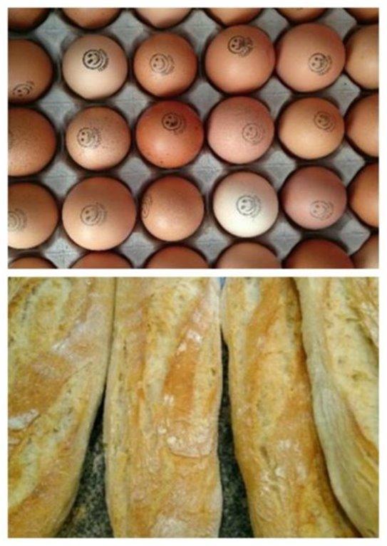 Cartón huevos felices + 1 extra