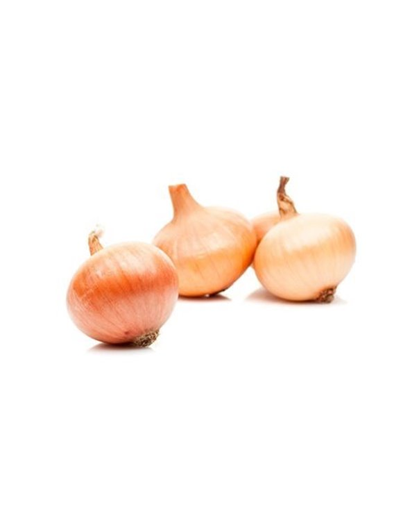 Cebolla Figueras (1 kg)