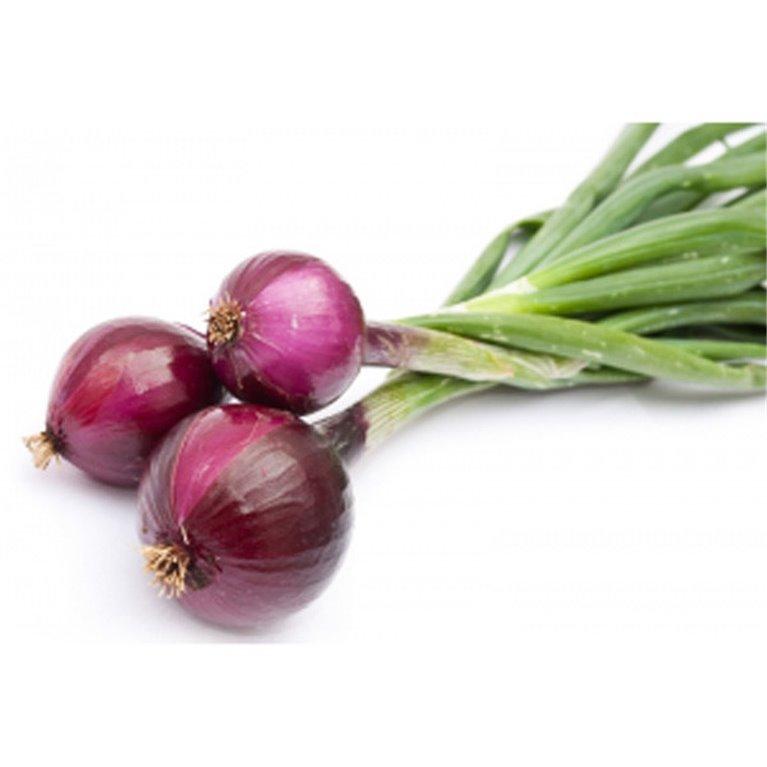 Cebolleta roja Fresca BIO - manojo