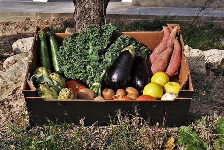 Cesta de fruta y verdura ecológica