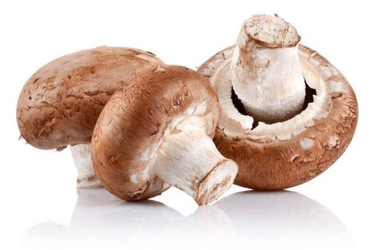 Champiñón marrón BIO - 3 kg