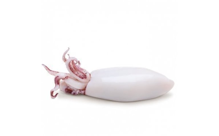 Chipirón Relleno, 1 kg