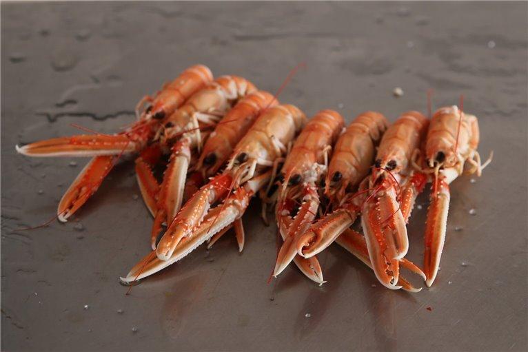 Norway lobster Box 2 K