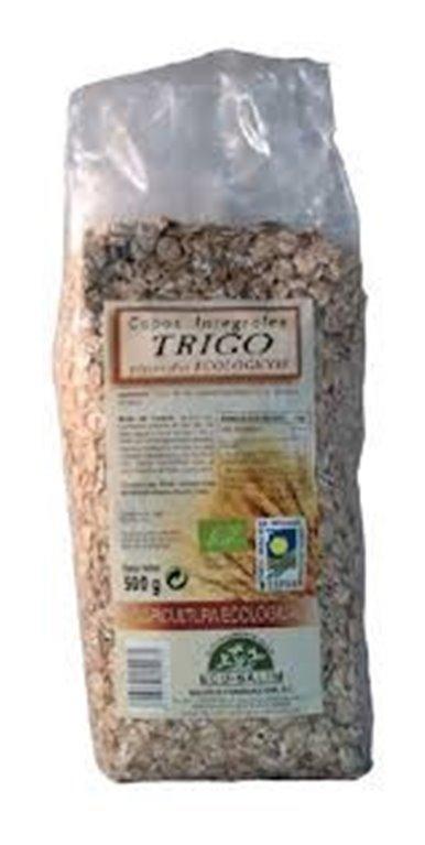 Copos de Trigo Integral Bio 500g