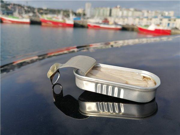 comprar espardeñas de mar