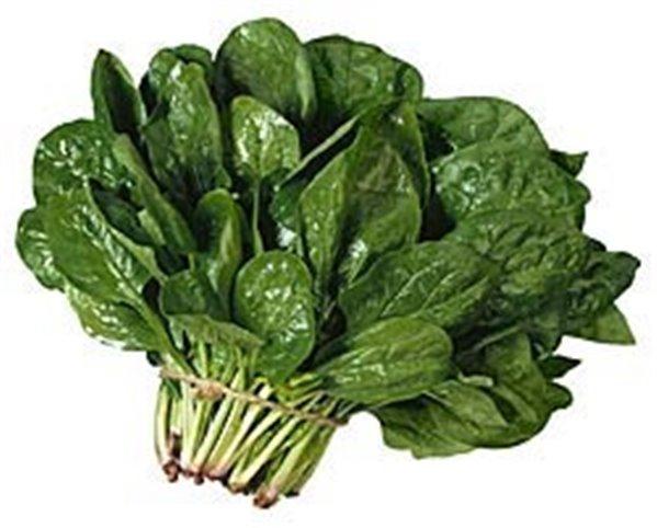 alimentos fortalecer sistema inmunológico