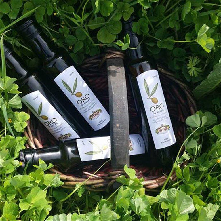 Aceite de oliva Virgen Extra Oro del Bierzo. 250ml