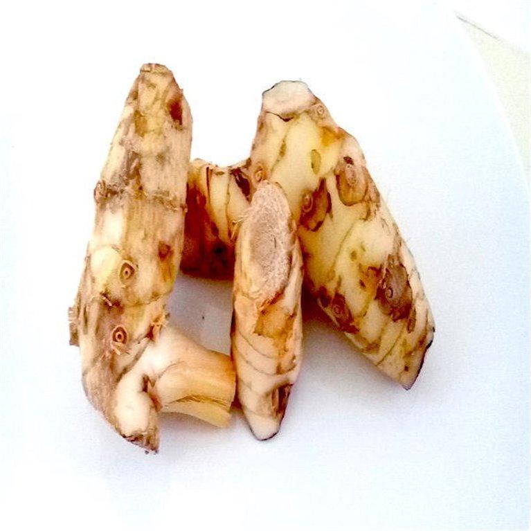 Galanga fresca, 1 ud