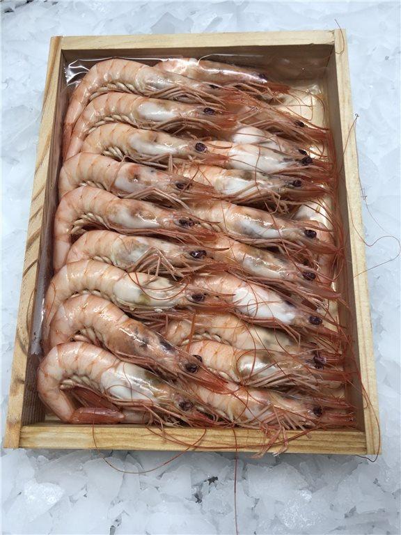 Cooked Mediterranean white shrimp