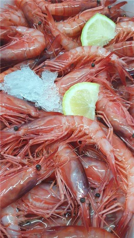 Gamba Fresca Roja 1/2 kg (ref. 020014, 020015)