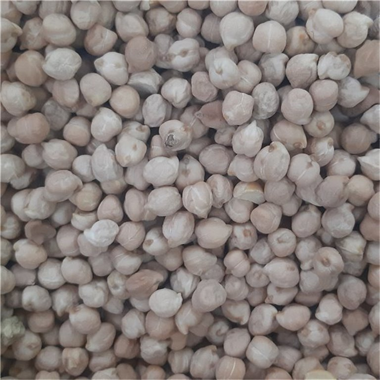 Organic Pedrosillano Chickpeas 500g