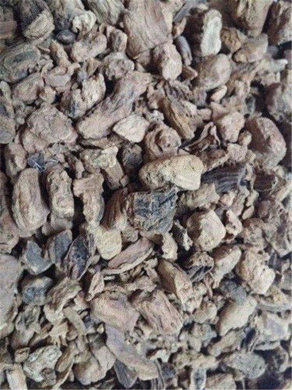 Genciana raíz, bandeja 100 gramos, 1 ud