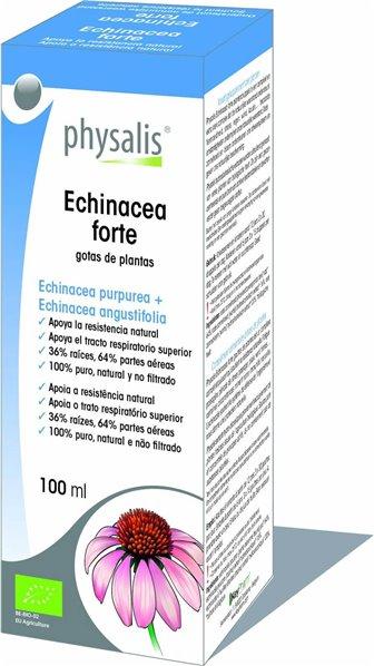 Gotas De Plantas Echinacea